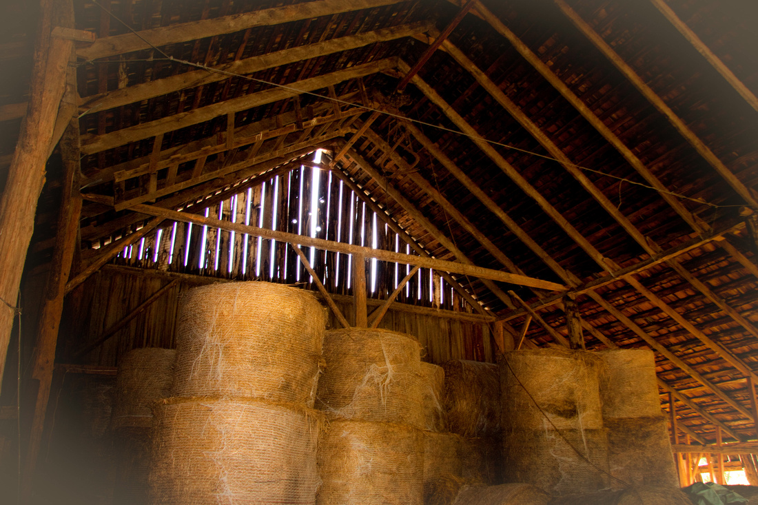 Hay Barn- Sedro Wooley Valley, WA